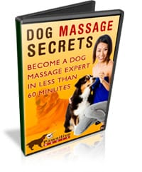 dog massage tips and secrets video series
