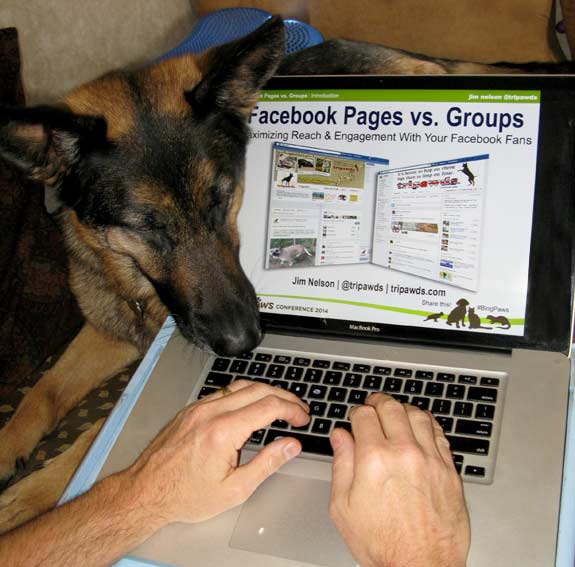 BlogPaws 2014 Facebook Presentation by Tripawds Admin