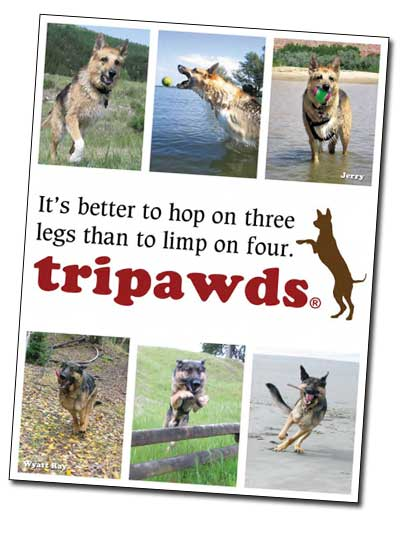 Tripawds Three Legged Dog Photo Book