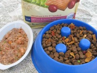Win Pure Essentials Dog Food