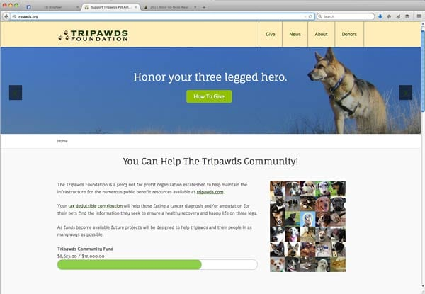 tripawds foundation blog