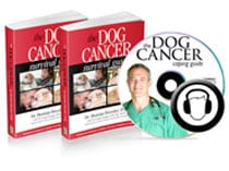 dog cancer survival kit