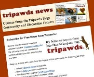 reipawds Newsletter