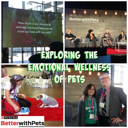 #BetterWithPets 2015 Summit