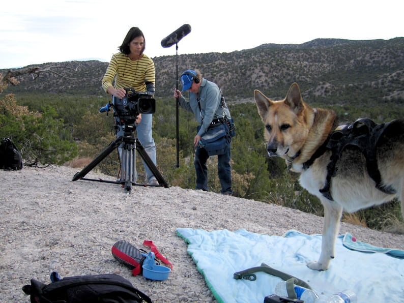 Filming Jerry for PBS Nature Series Show Why We Love Cats and Dogs