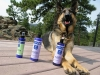 Wyatt Enjoys EO Natural Pet Grooming Products