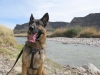 Wyatt watches Mexican Border on Rio Grande