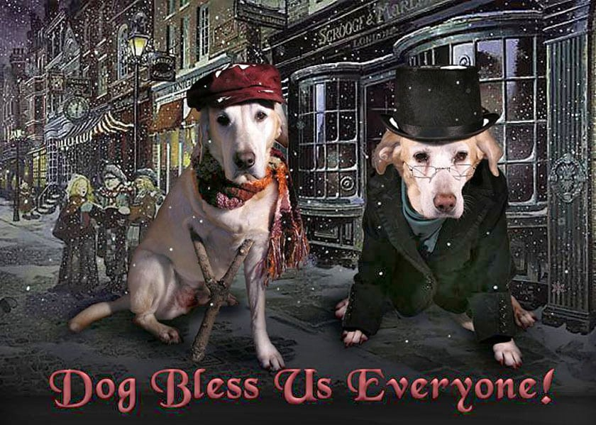 dog bless us