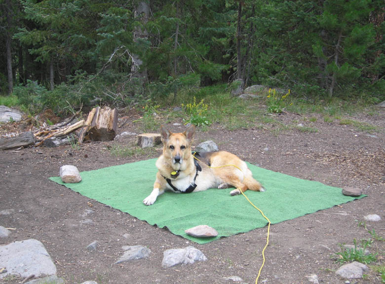 Jerry at Seedhouse Campground, Routt National Forest