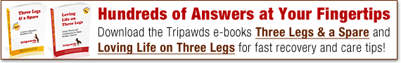 find fast answers in tripawds ebooks