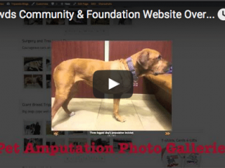 Tripawds Overview Video