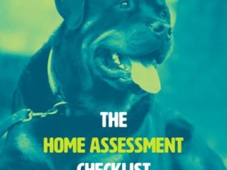 #ItsMyToo Home Assessment Tool