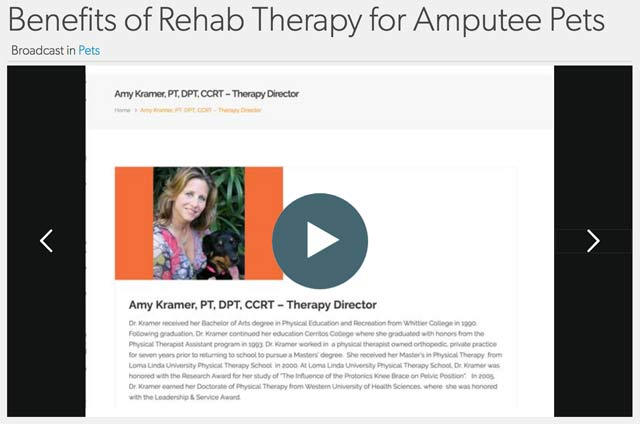 rehab therapy for Tripawds
