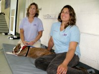 CARE Vet and Physical Therapist