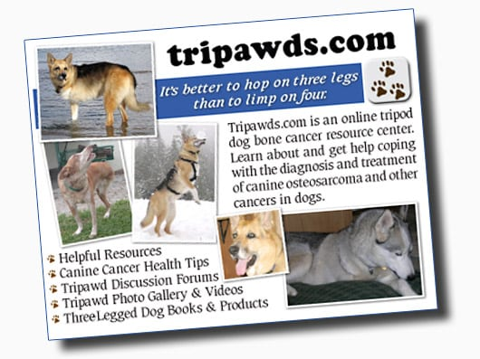 Help spread the word with free Tripawds cards!