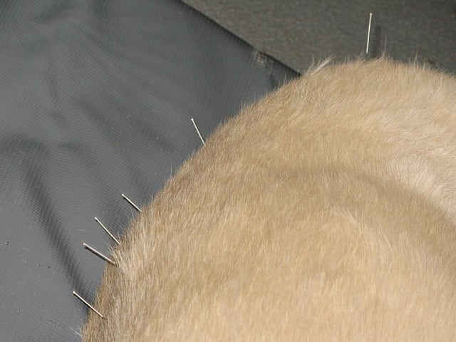 Help your tripod dog manage pain with acupuncturists from Colorado State University's Center for Comparitive and Integrative Pain Management Institute's Medical Acupuncture Program for veterinarians.