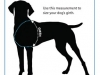 How To Measure Dog Girth for Best Harness Fit