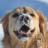 CatiesMom's avatar
