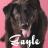 etgayle's avatar