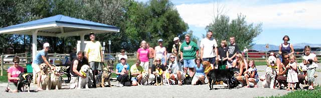 Tripawds Members Three Legged Dog Party