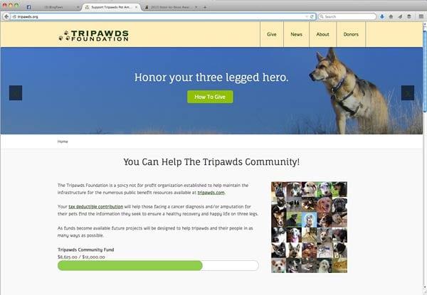 tripawds foundation blog