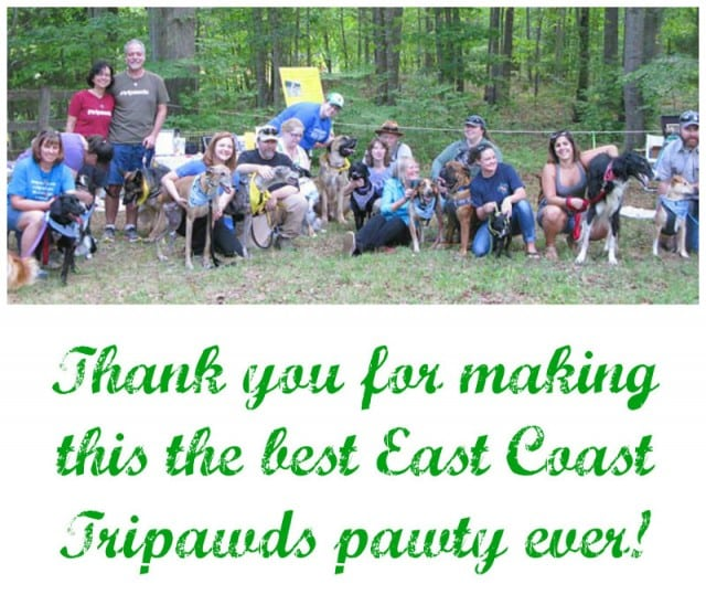 Amputee Tripawd dogs party Virginia