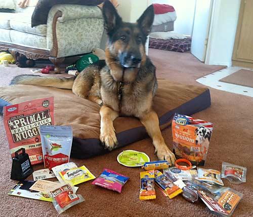Free Dog and Cat Goodies