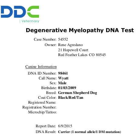 Tripawds 187 Ddc Dna Screening For Dogs And Cats Gives Life