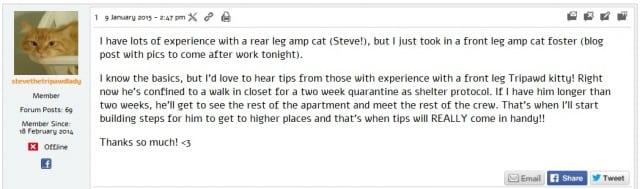 tripawd cat help