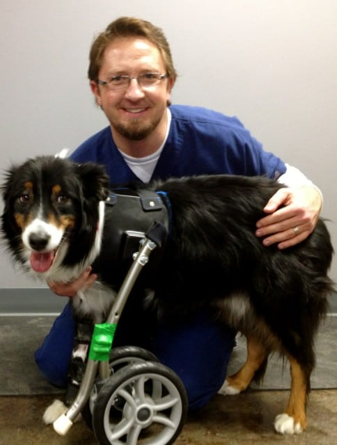 Kaufmann with Tripawd patient.