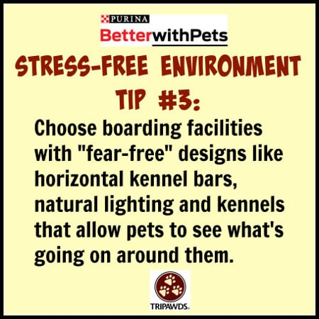 Purina #BetterWithPets Tips