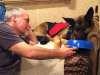 Hand feeding Wyatt Honest Kitchen