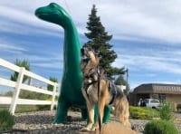 Washington Sinclair Dino