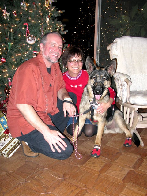 Tripawds Team ejoys first Christmas with Wyatt