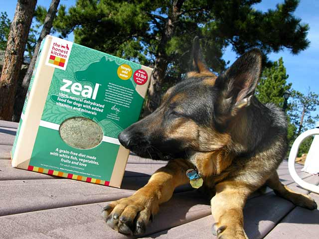 Wyatt Recommends Honest Kitchen Zeal Dehydrated Dog Food