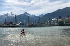 Wyatt swims in Skagway, Alaska