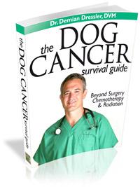 Dr Dressler Dog Cancer Guide