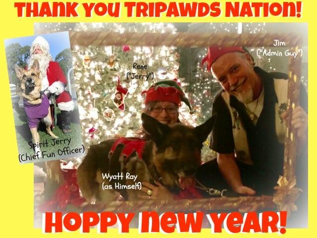Tripawds New Year 2017