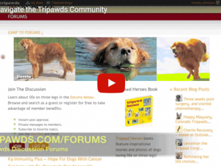 Tripawds Website Video
