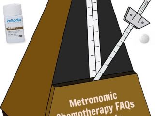 metronomic chemotherapy FAQs for Tripawds