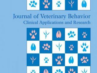 phantom pain in dogs study
