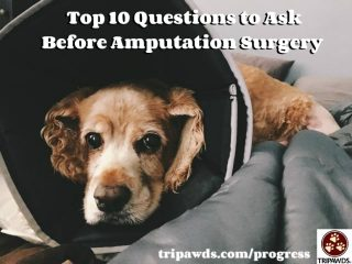 Questions to ask before amputation surgery