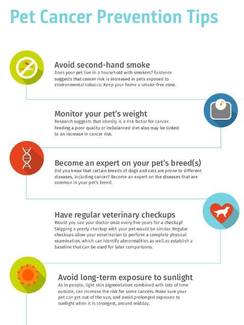 pet cancer checklist