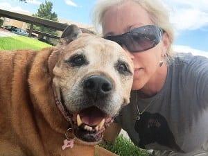 pet loss healing