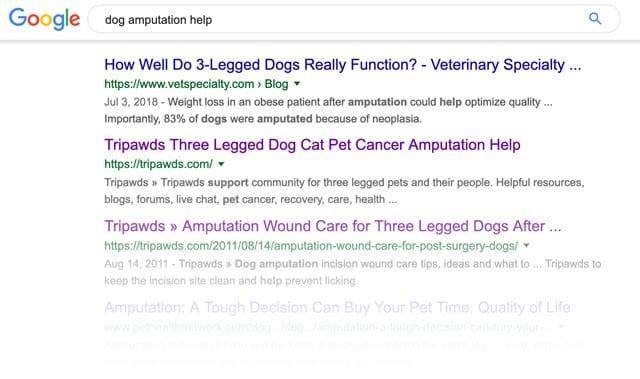 google tripawds