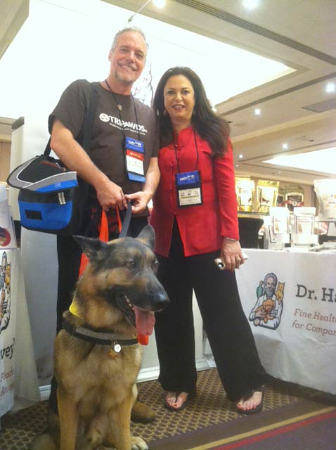 best canine cancer health tips