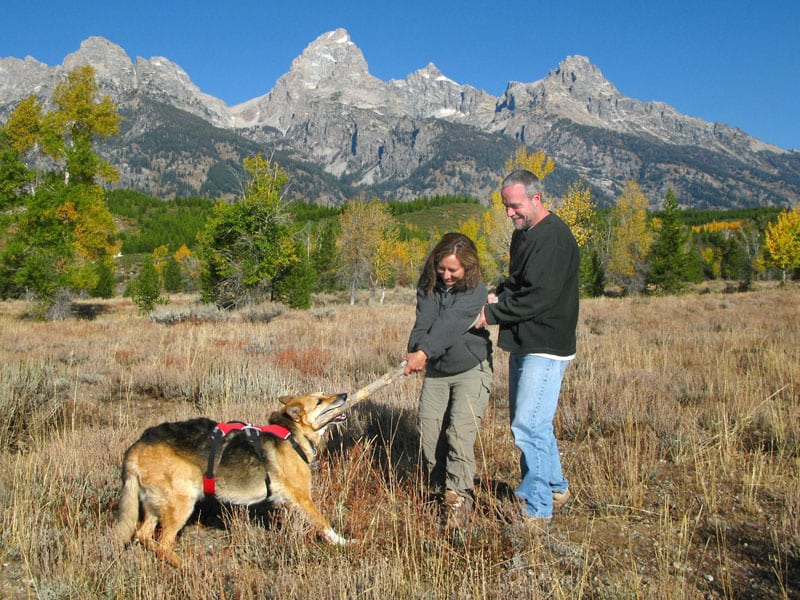 Fun with sticks at Grand Teton National Park
