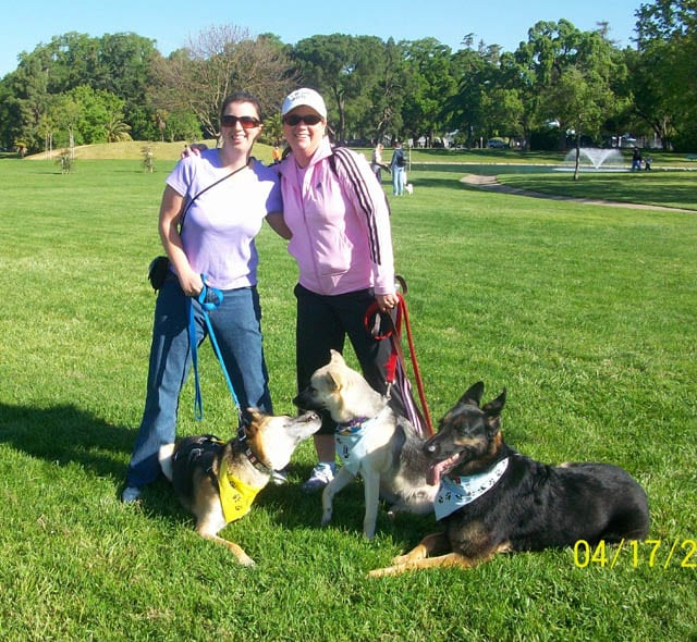 Tripawd Families Unite at K9K Walk