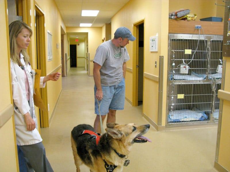 Veterinary Cancer Care Santa Fe