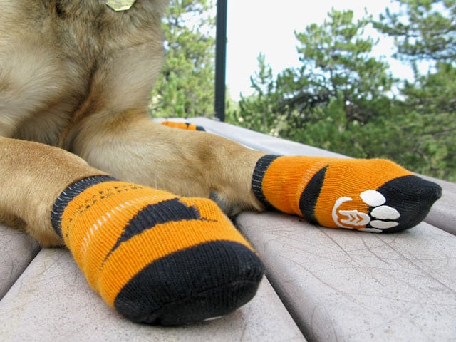 power paws traction socks